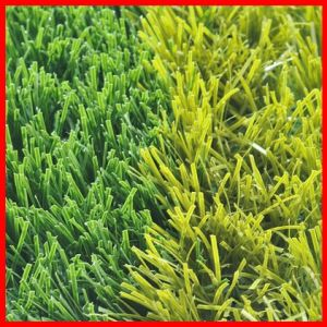 Professional Soccer Grass (S55117)