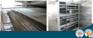 Commercial Drying Vegetable and Fruit Washer pictures & photos