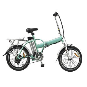 Economical Electric Folding Bike (FEB06-20)