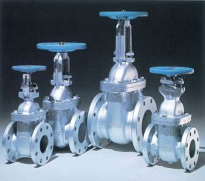 Steel Valves (HS-V-002) pictures & photos