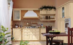 Best Sell PVC Kitchen Design (zc-015)