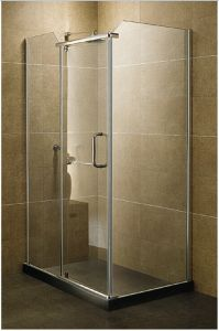 High Quality Shower Door for Good Price Wtm-03008 pictures & photos