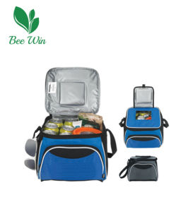 Promotional Cooler Bag for Outdoor Picnic (BW-6001)