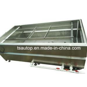 Tsautop High Quality Water Transfer Tank for Hydrographic Film pictures & photos