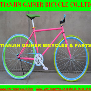 Tianjin 700c Road Bicycle Equipped with Fixed Gear pictures & photos