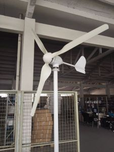 High Quality 800W Horizontal Wind Turbine Generator for Home Use pictures & photos