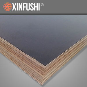 F17 Formwork Plywood According to As6669 for Australia Market pictures & photos