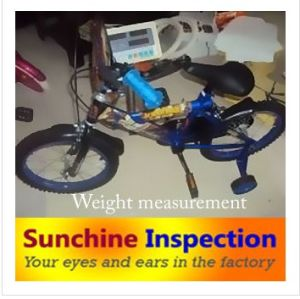Professional Bike Inspection in Ningbo pictures & photos