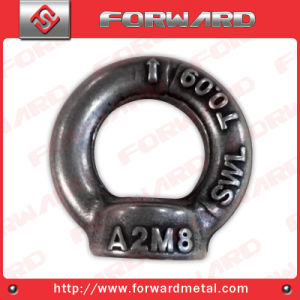 Ss304 Stainless Steel Drop Forged Lifting Eye Nut Lifting Arrow DIN582 Eye Nut pictures & photos