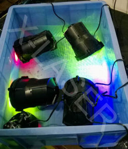 Outdoor Green&Blue Moving Firefly Garden Laser Light/Lawn Light pictures & photos