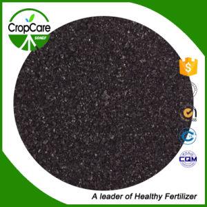 Humic Acid Organic Fertilizer Price pictures & photos