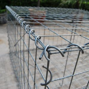 Professional 2*1*1 Galvanized Welded Gabion Box pictures & photos