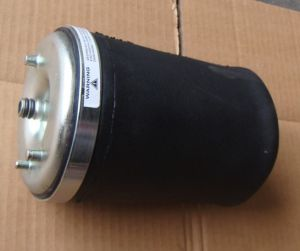 Tata Air Spring for India Market pictures & photos