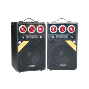 Professional Active Speaker (C-800A)