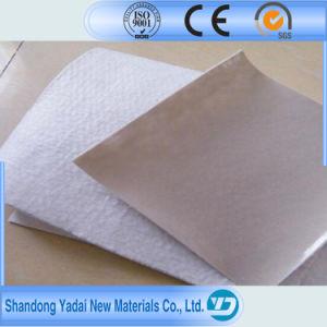 Geocomposite/Compound Geomembrane/Geotextile Membrane pictures & photos