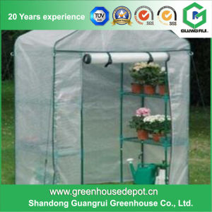 Premium Fashionable Residential Gardens Greenhouse on Sale pictures & photos