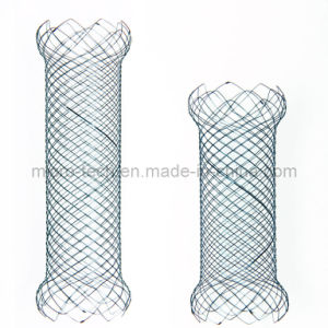 Duodenal Stent with CE Certification