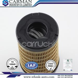 Auto Parts Fuel Filter for Perkins Series Fuel Pump Element 26560163 pictures & photos