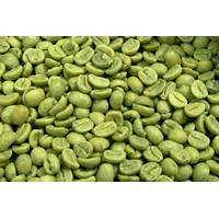 Natural Green Coffee Bean Extract with Competitive Price on Sell pictures & photos
