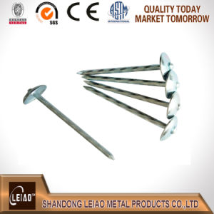Umberlla Head Galvanized Roofing Nail pictures & photos