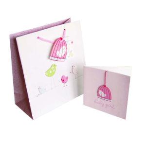 Paper Gift Bag (XG-PB-056)