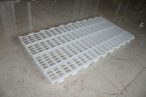 Goldenest Plastic Flooring for Chicken Farm House Jcj13-PS