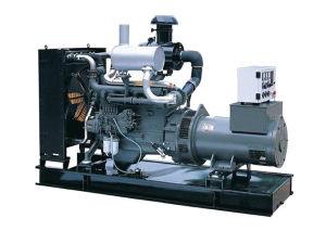 Diesel Generator Set (ETPG110)