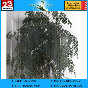3-6mm Am-31 Decorative Acid Etched Frosted Art Architectural Glass pictures & photos