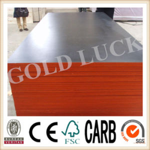 Qingdao Gold Luck Film Faced Plywood Multifunction Concrete Formwork pictures & photos