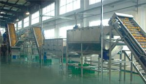 Turnkey Project of Citrus Processing Line Produce Nfc Juice or Concentrate: pictures & photos