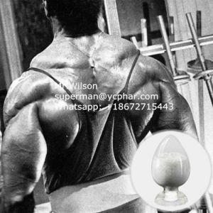 Best Sarms Powder Testolone/ Rad140 Enhanced Stamina Gain Muscle pictures & photos