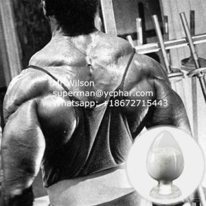 Rad-140/ Rad140 Sarms Powder with Quality Offering 1182367-47-0 pictures & photos