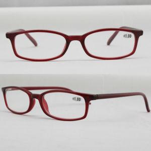 Plastic Designer Name Brand Optical Frame Reading Glasses (91053)