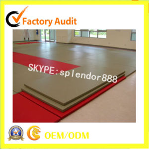 OEM Tatami Arts Karate Judo Kick Boxing Gym Factory Supplier pictures & photos