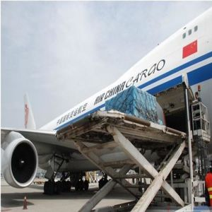 Professional Air Freight From Beijing to New York, USA pictures & photos