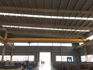 10t High Quality Single Girder Overhead Crane with Electric Hoist pictures & photos