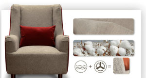 Europe Chair, Fabric Chair, Home Furniture, Chair (M1503) pictures & photos