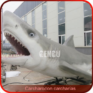 Animated White Shark Sea Animals Models pictures & photos