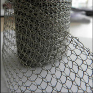 Stainless Steel Wire Mesh/Stainless Steel Woven Mesh pictures & photos