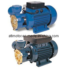 dB/Kf1/ Kfo Series Peripheral Pumps pictures & photos