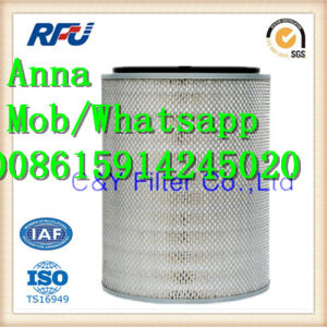 1907695 2996127 Air Filter for Iveco (1907695, 2996127) pictures & photos