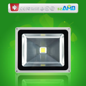 30W LED Flood Light, 30W LED Flood Lighting with 100lumens/W