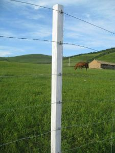 Professional Manufacture of Farm Fence pictures & photos