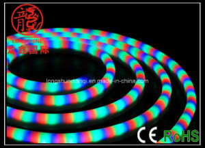 Decoration LED Flexible Neon Light pictures & photos