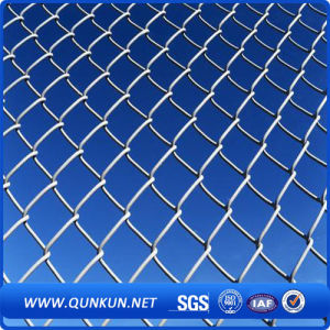 Chain Link Fencing/PVC Coated Chain Link Fencing (Anping) pictures & photos
