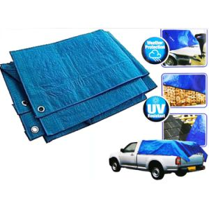 50GSM-300GSM Plastic Sheet Awning Laminated Truck Cover PE Tarpaulin pictures & photos