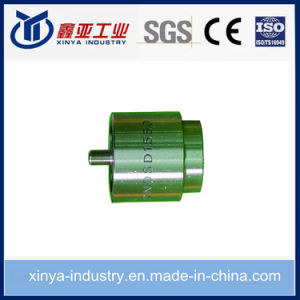 Shot Pintle Fuel Noozle for Diesel Engine and Injector pictures & photos
