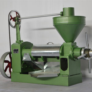 Pakistan Preferred 6yl-100 Cooking Oil Press pictures & photos