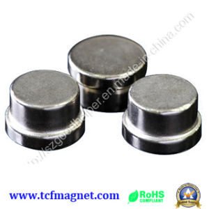 High Quality Permanent Magnet for Industry