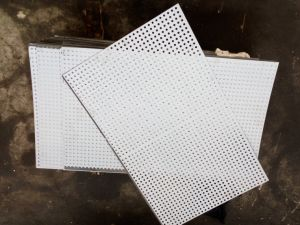 Perforated Sheets/ Perforated Panels/ Perforated Plates pictures & photos